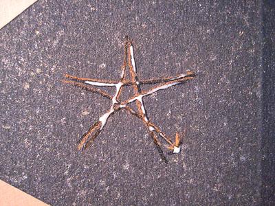 Star Spell gilding 1