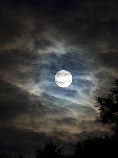 Blue Moon 2009_2