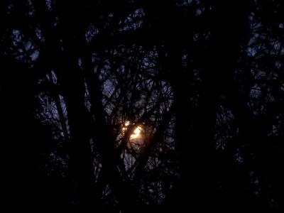 Full Moonset January