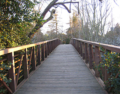 Coyote Creek Bridge