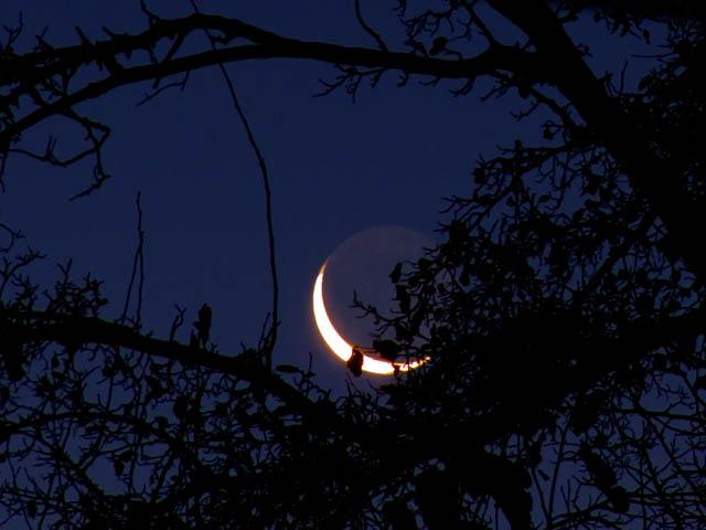 Solstice Crone Moonrise 2011