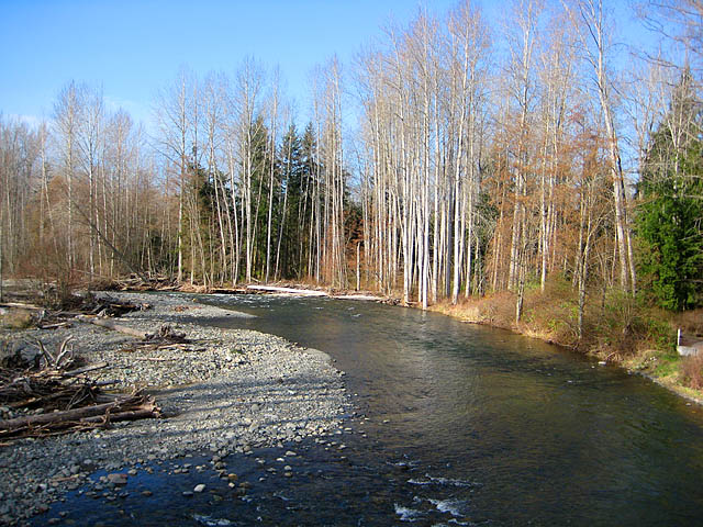 Sequim Dungeness River