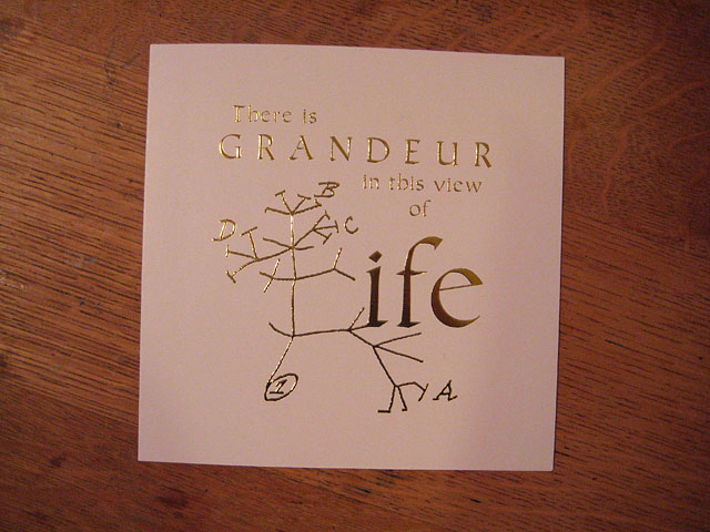 Codex2013_Grandeur Life Card