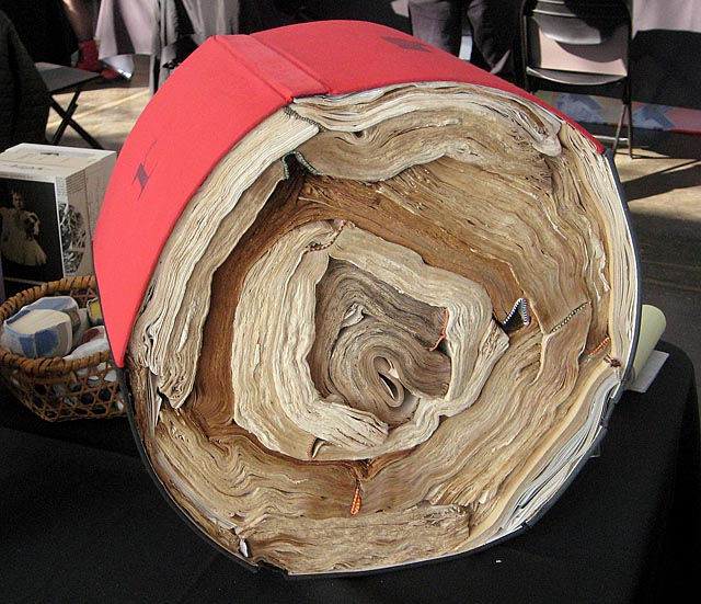 CodexFair2013_Tree Stump Book