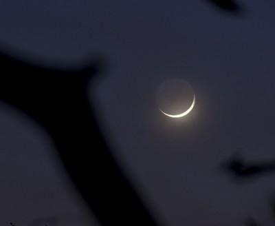 New Year 2014 New Moon