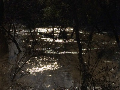 Coyote Creek Flood_Light Water Magic