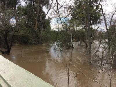 Coyote Creek Flood_from the bridge