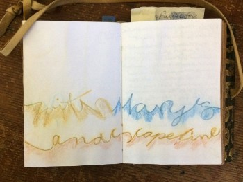 Mary Austin landscape line journal
