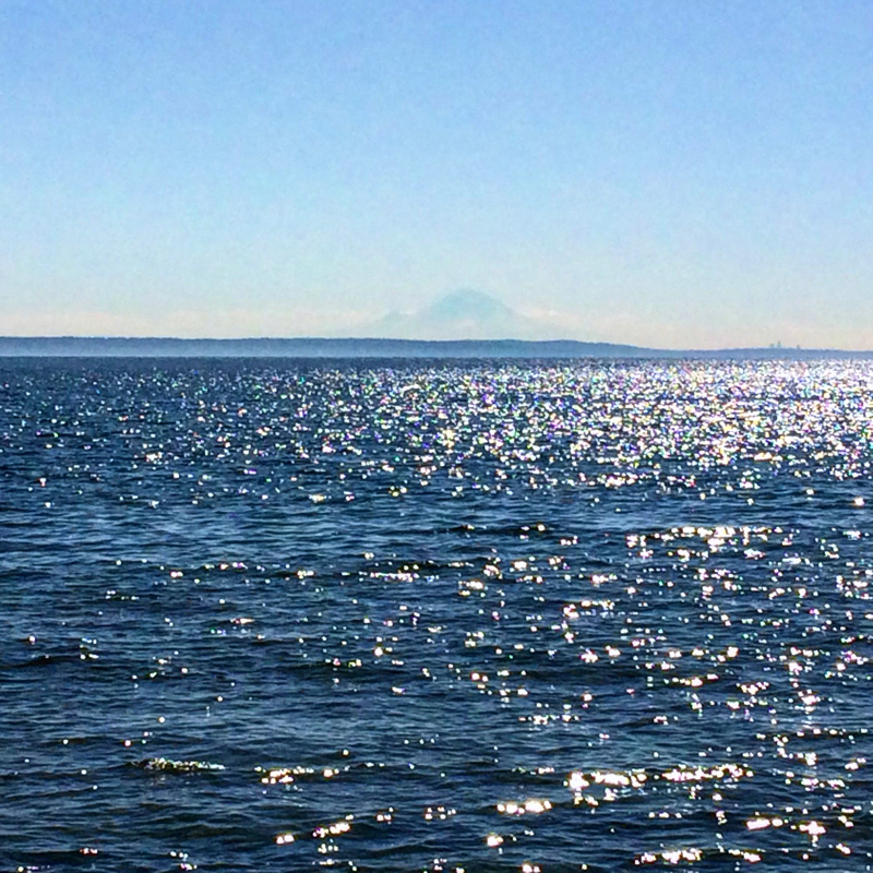 Gaian Retreat_Sea and Mount Ranier