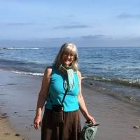 Lunasa_at the seaside