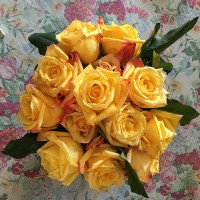 Lunasa_yellow roses