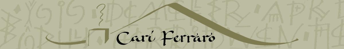 Cari Ferraro header image